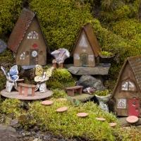 Fairy Land...