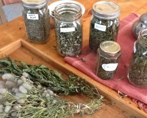 Claudia's Dried Herbs