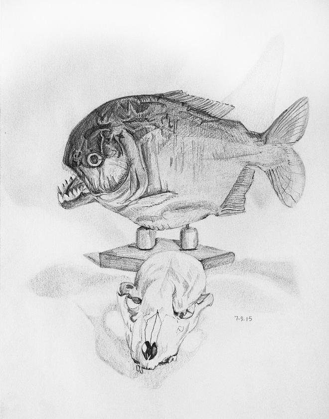 Piranha and Skull